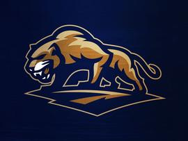 Золотая пантера